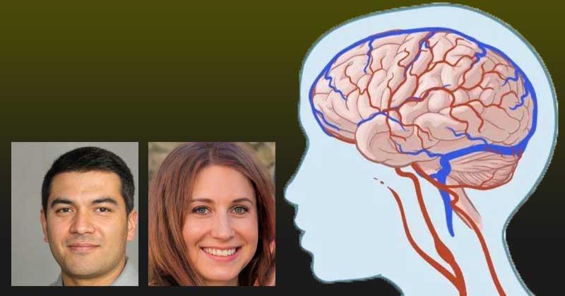 Какви ефикасни хапчета за оросяване на мозъка има?